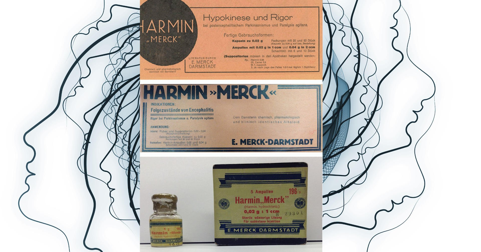 1928-1931 – Clinical Trials with Harmine Conducted on Parkinson's Disease